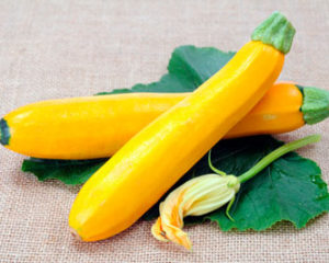 courgettegeel